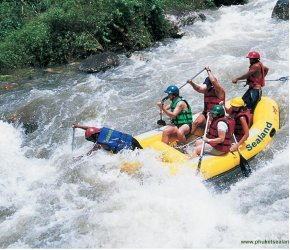 Rafting in the tropics