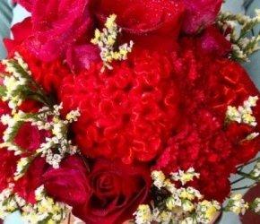 flowers №113