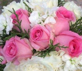 flowers №115