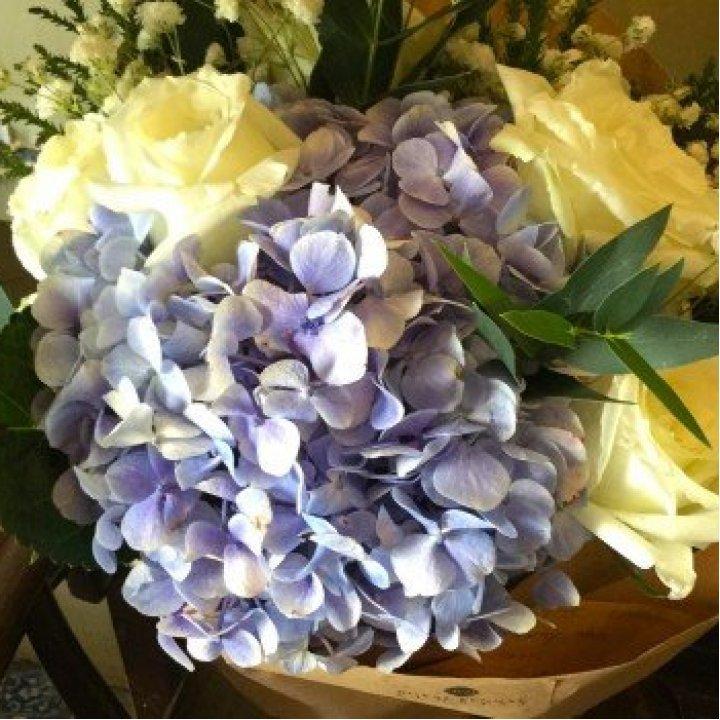 flowers №76