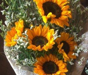 flowers №77