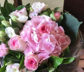 flowers №80