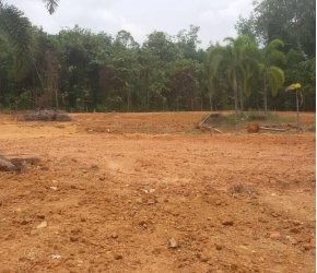 Земельный участок № 116