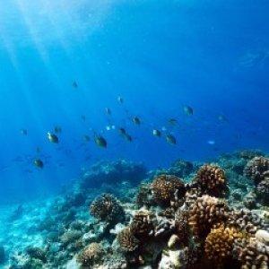Рок и Ха: неизведанные уголки Андаманского моря