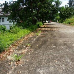 Земельный участок № 120 на Пхукете